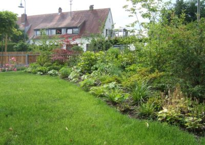 Rollrasen und Bepflanzung